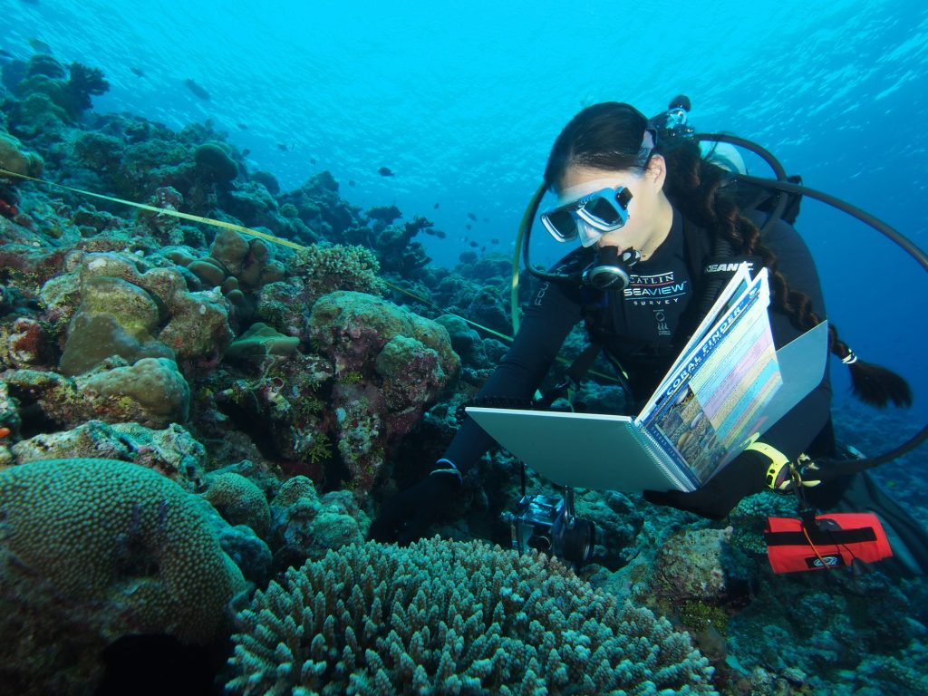 Coral Finder 2.0 in action in the Maldives...