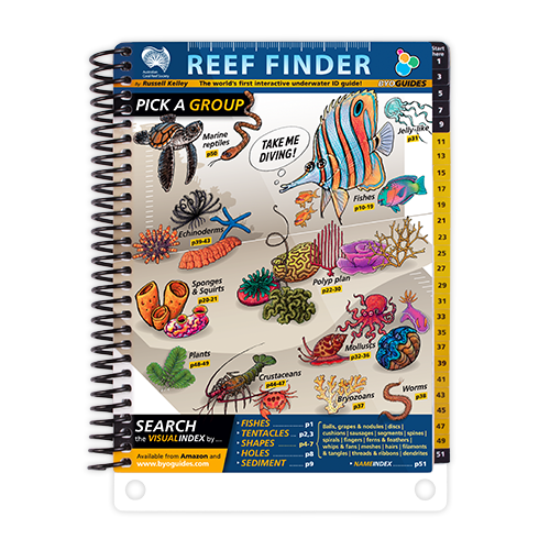 The Reef Finder